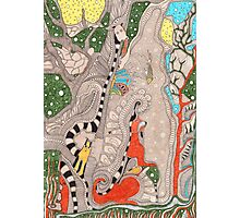 The forest. Animals familiar and unfamiliar. Photographic Print