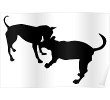 dogs fight silhouette Poster