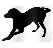 English foxhound dog silhouette Poster
