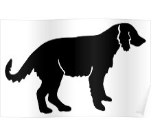 Irish red and white setter dog silhouette Poster