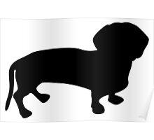 Chesapeake bay retriever dog Poster