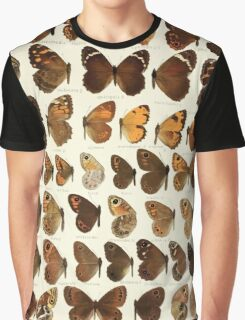 The Macrolepidoptera of the world a systematic account of all the known Butterflies Moths Adalbert Seitz V1 V3 1906 045 Pararge Aphantopus Graphic T-Shirt