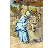 Vincent van Gogh The Sheep-Shearer Photographic Print