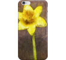 Daffodil Pencil iPhone Case/Skin