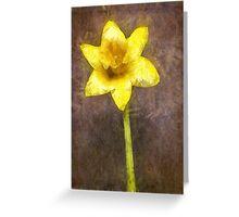 Daffodil Pencil Greeting Card