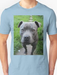 A Cute Dog Outdoors Unisex T-Shirt