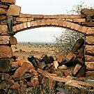 homestead ruin by Janine Paris