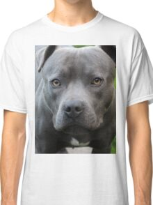 A Dog Outdoors Classic T-Shirt