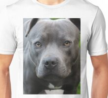 A Dog Outdoors Unisex T-Shirt