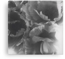 Flowers big in black and white Canvas Print