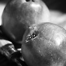 red pears by Janine Paris