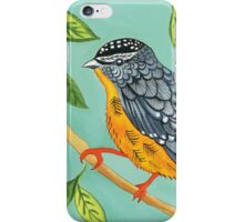 Australian spotted pardalote bird iPhone Case/Skin