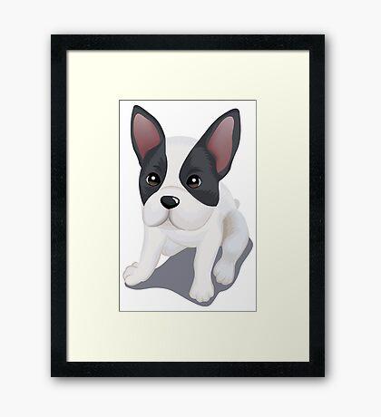 Rat terrier dog  Framed Print
