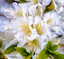 White Rhododendron Sticker