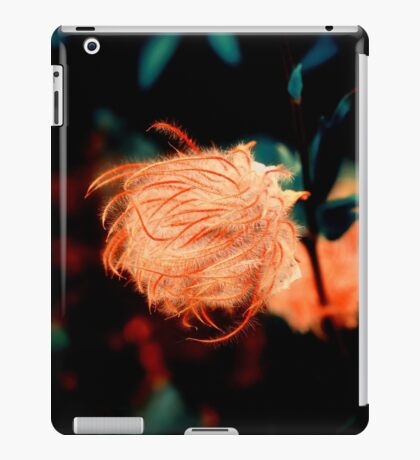 Night mystery iPad Case/Skin