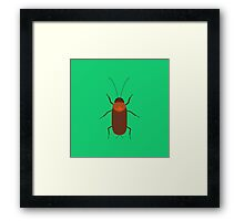Cockroach insect Framed Print