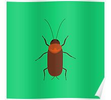Cockroach insect Poster
