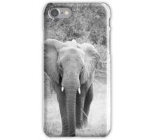 Black and white elephant iPhone Case/Skin