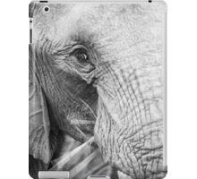 close up of an elephant eating iPad Case/Skin