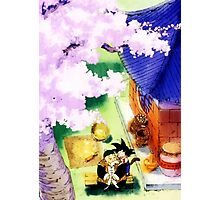 Dragon Ball Photographic Print
