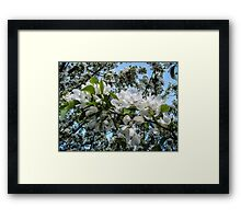Pure and Simple 2 Framed Print