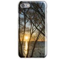 Golden Willow Sunrise iPhone Case/Skin