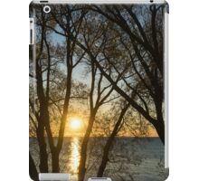 Golden Willow Sunrise iPad Case/Skin