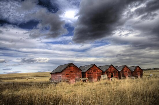 Five Red Barns by PrairieRose
