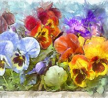 Flower Box Full of Pansy Pencil by Edward Fielding