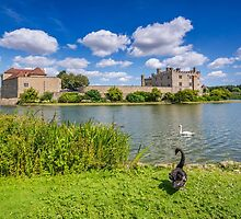 Leeds Castle Kent by Chris Thaxter