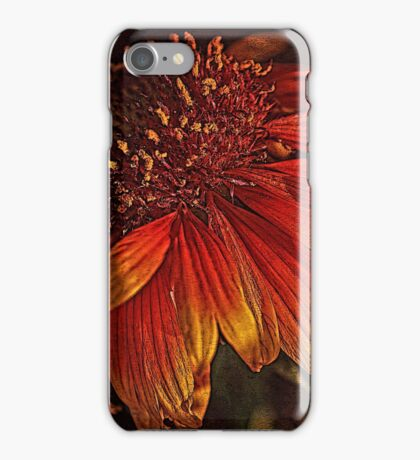 Flowers - Red And Yellow  iPhone Case/Skin