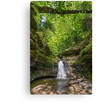 The Punch Bowl at Turkey Run State Park, Indiana Canvas Print