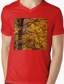 Golden Autumn Mens V-Neck T-Shirt