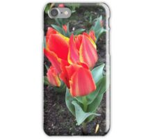 Red Flower like an Open Flame iPhone Case/Skin
