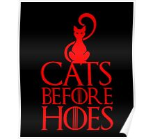 Cats Before Hoes, Funny Game Of Thrones Fans And Loves Cat Gift Poster