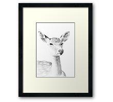Doe Illustration Framed Print