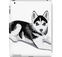 Cute Boston terrier iPad Case/Skin