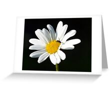 Pollen collection Greeting Card