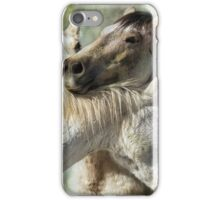 Surrounded by Love iPhone Case/Skin