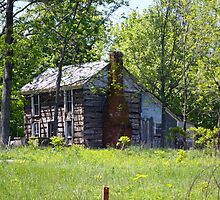 OLD INDIANA LOG CABIN by Pauline Evans