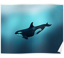 Lost in Serenity ~ Orca ~ Killer Whale Poster