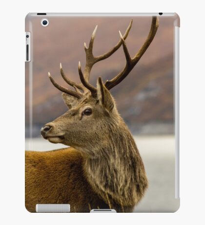Autumnal Stag iPad Case/Skin