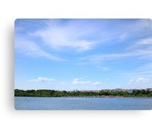 Washington, DC Canvas Print