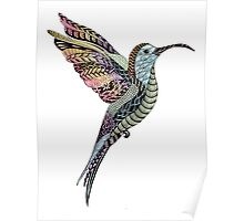 Ink and Watercolour Hummingbird Poster