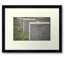 monument to the unknown soldier Framed Print