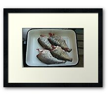 fresh gutted fish  Framed Print