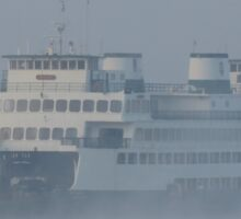 Ferry Hyak in the fog Sticker