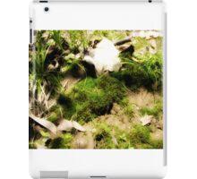 Venerable Earth iPad Case/Skin