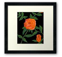 Peach roses Framed Print