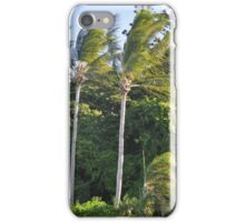 TWO PALMS HAMILTON ISLAND iPhone Case/Skin